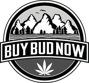 BUYBUDNOW-canada-dispensary